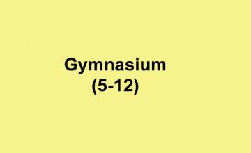 Gymnasiumsv