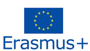 erasmus_resim_1