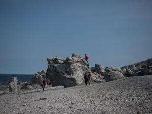 180824 Gotland-17